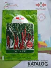 jual benih cabe merah besar whatsapp 0857 7228 0300