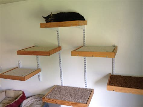 how to build cat shelves cat shelves pdf woodworking