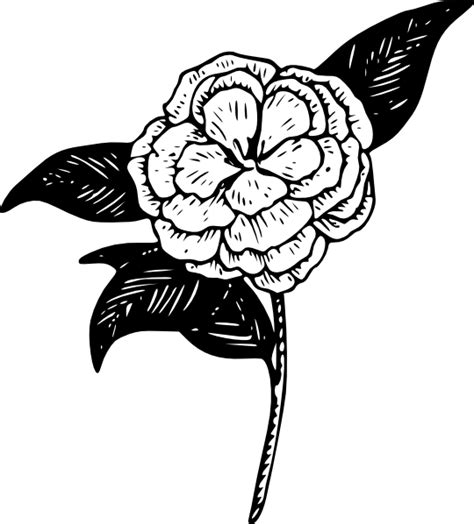 camellia flower tattoo designs flower camellia clip at clker vector clip