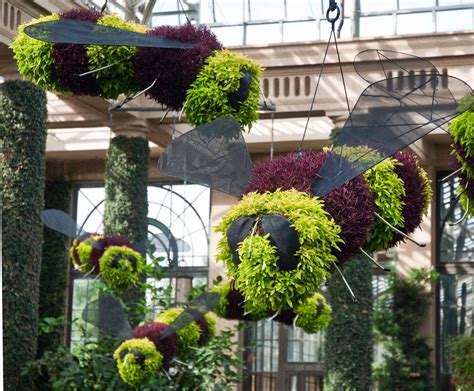 garden topiary wire forms topiary gardens gardening web articles