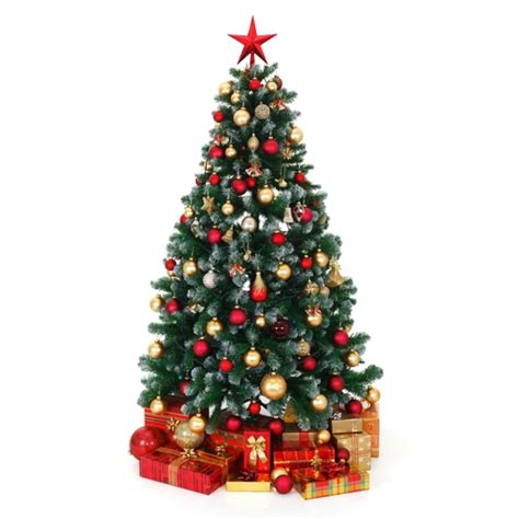 best 28 christmas tree shop adelaide spending