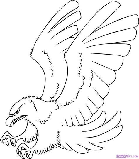 how to draw a hawk for kids coloring home