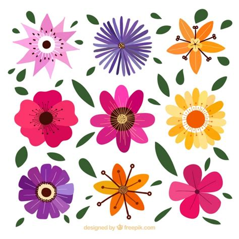 decorative flowers decorative flowers with different designs vector premium