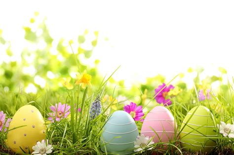 easter wallpaper for pc holiday easter wallpapers desktop phone tablet
