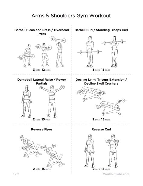 best workout exercise for arms most popular workout programs
