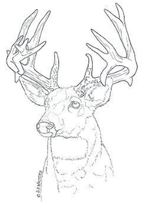 pyrography templates free 44 best stencils images on ideas deer