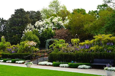 37 Best Spring In The Garden Images On Pinterest Spring Flower Garden In Dallas