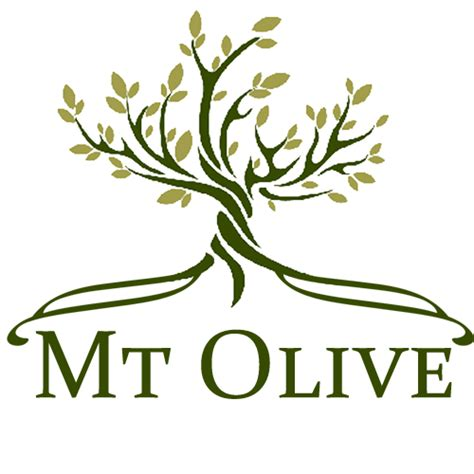Of Mount Olive Mba Curriculum by Class Descriptions Mt Olive Preschool