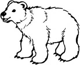 coloring polar bear free printable downloads choretell