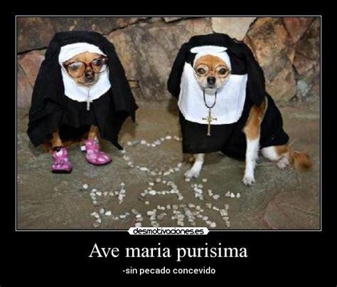 Ave Maria Meme - ave maria purisima desmotivaciones