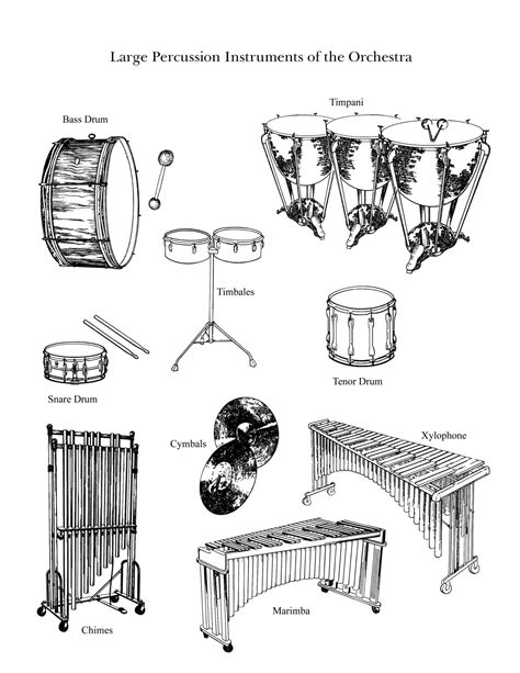 percussion family coloring page quot the percussion family large quot large instruments from