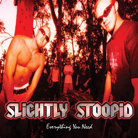 Everything You Need everything you need slightly stoopid
