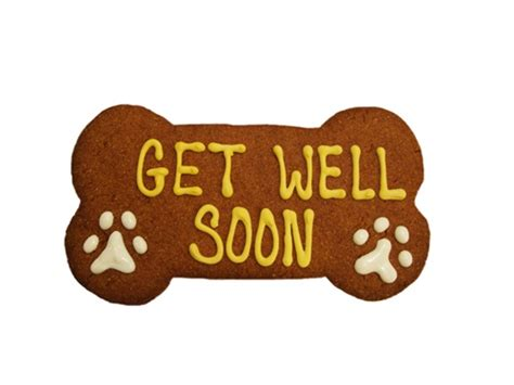 where to get puppies get well cookie bakery gourmet treats s barkin bakery