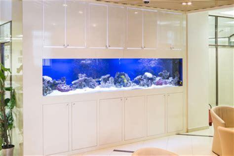 Aquarium In Wand by Wandaquarium Ja Nein Wandaquarium Info