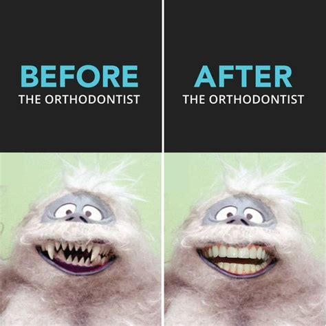 Orthodontist Meme - 1000 ideas about dental humor on pinterest dental