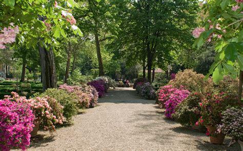 i giardino dei semplici il giardino dei semplici radici fiorentine da 470 anni