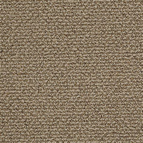 home decorators collection carpet sle braidley in color dried herbs 8 in x 8 in sh home decorators collection braidley s color pewter 12