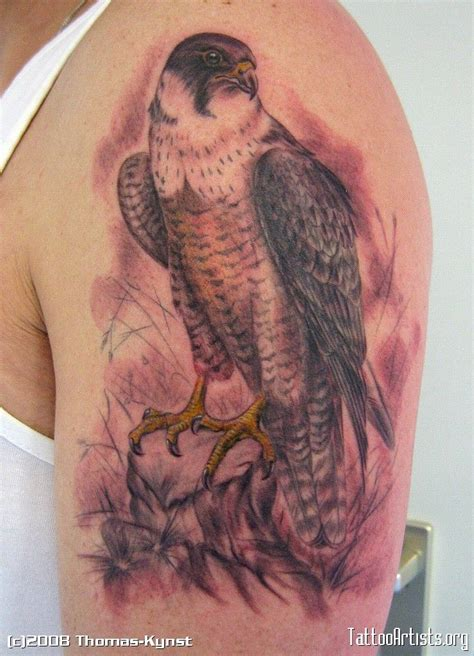 falcon tattoo meaning hawk idea hawk ideas