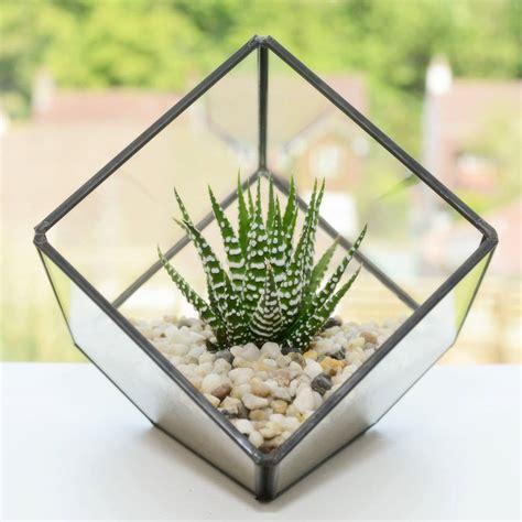 White Square Vase Glass Cube Succulent Terrarium Kit By Dingading Terrariums