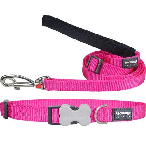 pink collar dingo classic pink collar leash at dogtuff