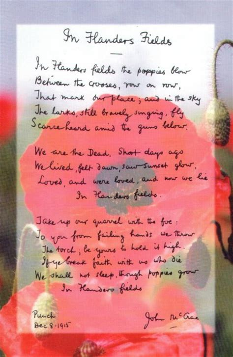 printable version of flanders fields in remembrance of passion for the humanities
