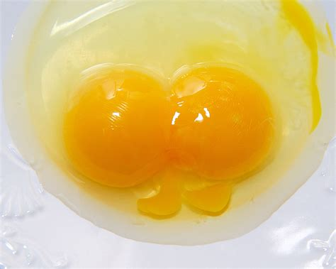 Usda Rd double yolks curbstone valley