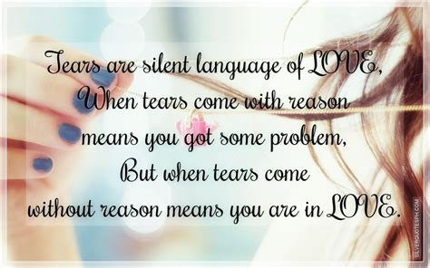 quotes  silent tears quotesgram
