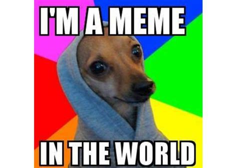 Meme Generator Unblocked - meme maker unblocked 100 images omg unblocked meme