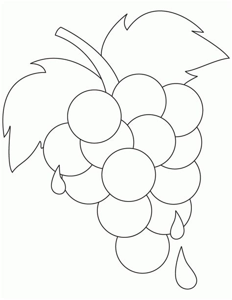 preschool coloring pages grapes grapes pictures coloring home