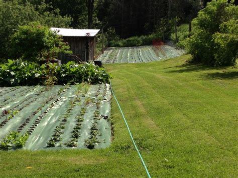 In The Garden Mat by Dreaming Of Next Year S Garden Garden Mats