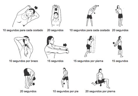 cadenas musculares miembro superior pdf blog tecnos 01 01 2013 02 01 2013