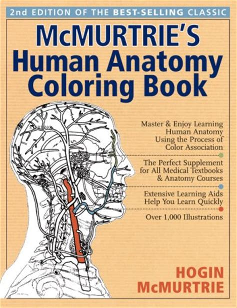 regents human anatomy coloring book 404 squidoo page not found