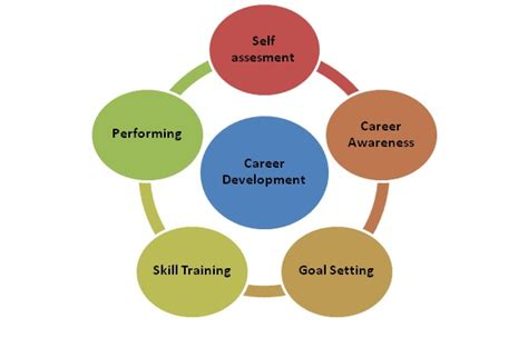 Mba Hrm Means by Career Development Definition Human Resources Hr