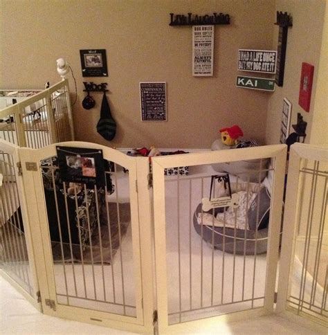 puppy room 25 best ideas about puppy playpen on playpen puppy crate and crate
