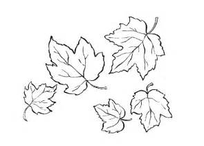 coloring fall leaf free coloring pages of autumn leaf