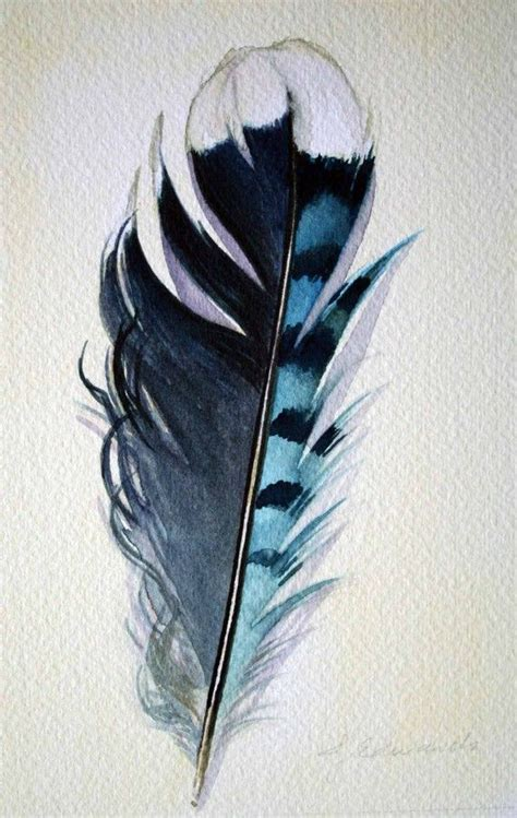 blue jay feather tattoo 1000 ideas about watercolor feather tattoos on