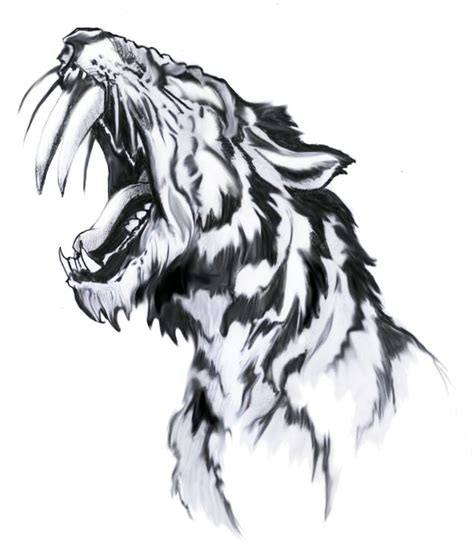 saber tooth tiger tattoo saber tooth tiger www pixshark images