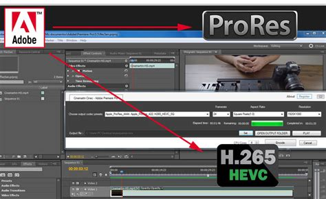 export adobe premiere to avid export adobe premiere sequence timeline to multiple output