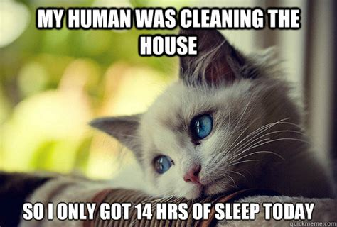 Clean House Meme - 10 spring cleaning memes for motivation busy clean