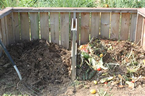 5 Simple Tips To Growing A Healthy Vibrant And Organic Compost For Vegetable Garden
