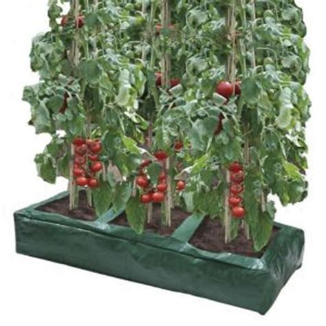 Hedge Planter Bag Small buy great value tomato grow bags from ireland s garden shop