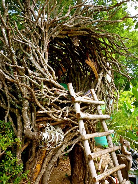 bird nest tree house architecture pinterest