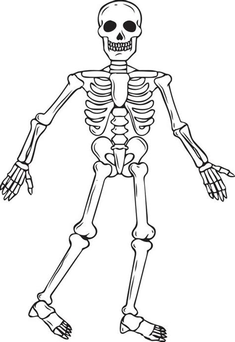 Printable Skeleton Coloring Pages Coloring Me Skeleton Color Page