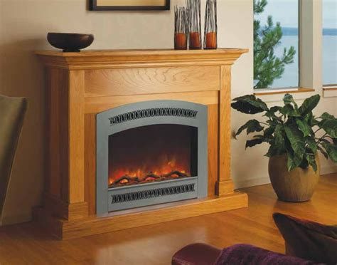Most Realistic Gas Fireplace Insert by Most Realistic Gas Fireplace Insert 28 Images