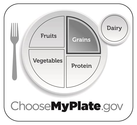 myplate coloring page pdf myplate graphic resources