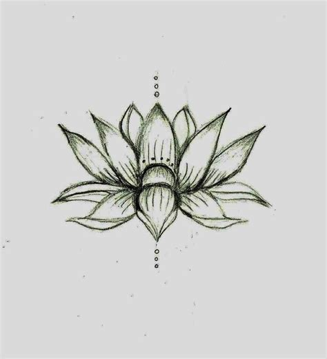 simple lotus flower tattoo this lotus flower sketch ideas