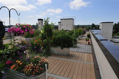 living roof seattle cedar park photo gallery