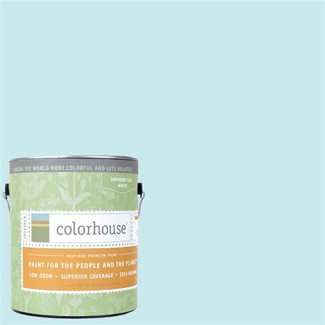 colorhouse paint colorhouse 1 gal 01 flat interior paint 481312 the home depot