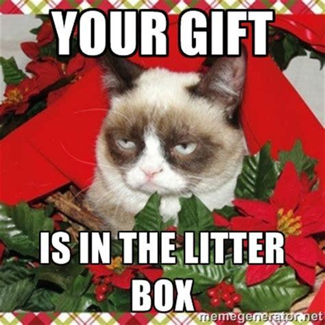 Cat Christmas Memes - grumpy cat memes christmas image memes at relatably com