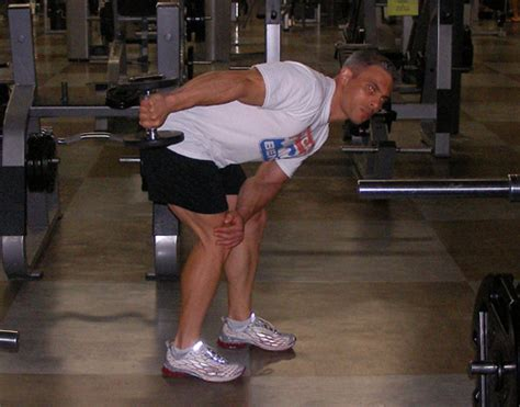 tricep kickbacks on bench tricep dumbbell kickbacks exercise